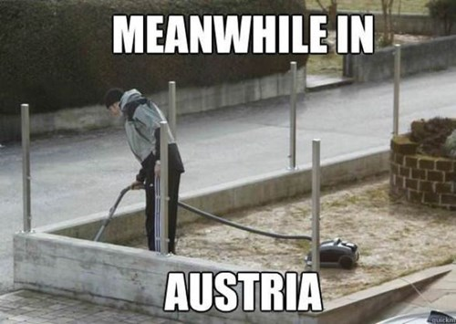 lawn,funny,vacuum