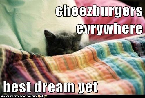 Cheezburger Image 7626266880
