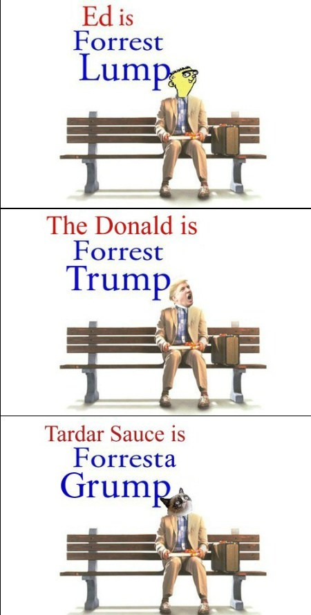 Memebase Forrest Gump All Your Memes In Our Base Funny Memes Cheezburger