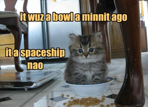 cute,spaceship,imagination,food,bowl