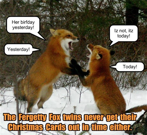 Her birfday yesterday! Iz not, itz today! Yesterday! Today! The Fergetty Fox twins never get their Christmas Cards out in time either.