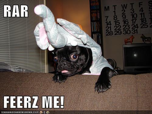 elephant,fear me,derpasaur,funny