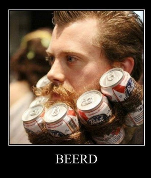 beer beard pbr puns funny - 7628456960