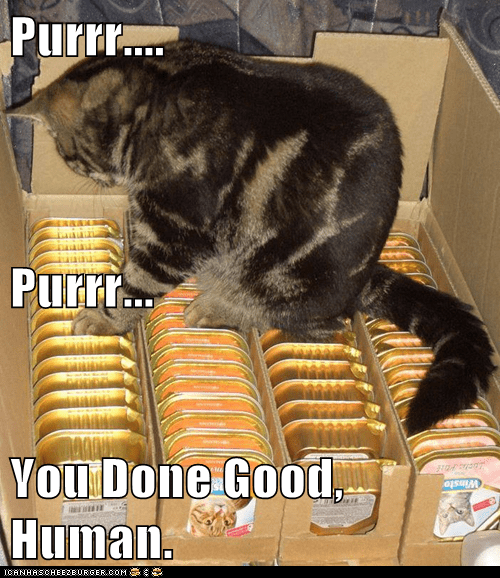 purr,good work,cat food