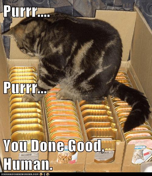 purr cat food - 7628526592