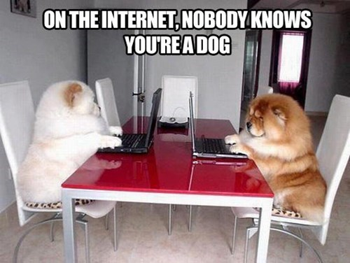 dogs,computers,on the internet,funny