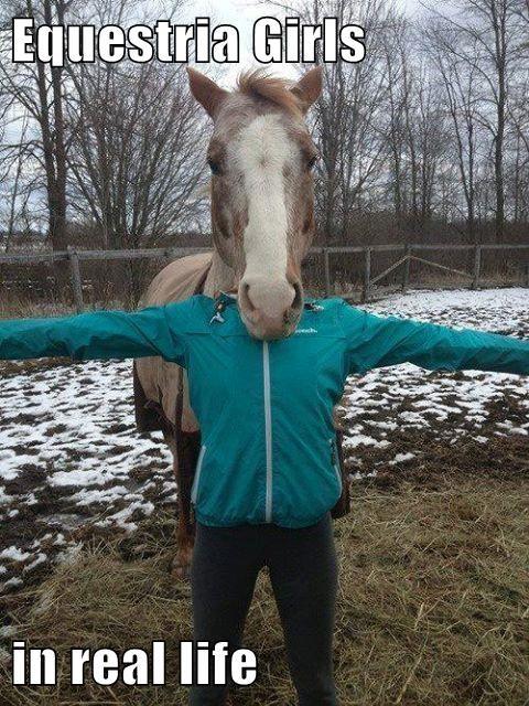 costume halloween horses weird equestria - 7628740608