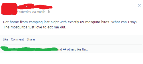 69-mosquito-bites