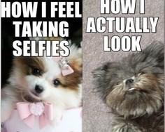 selfie funny - 7629366272