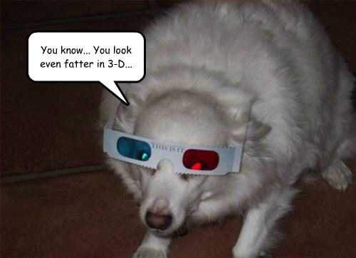 fat,3d glasses,funny,wisdow