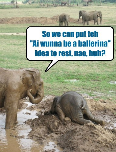 dream elephant ballet funny