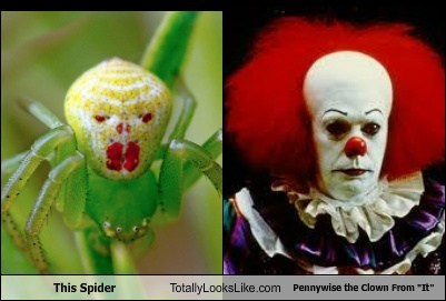 spiders,pennywise,scary,it,totally looks like,funny