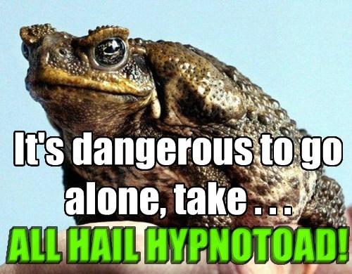 its dangerous to go alone hypnotoad zelda funny - 7631900160