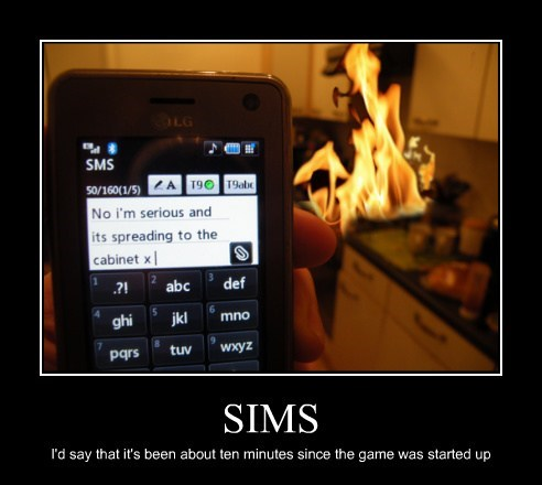 fire,Sims,idiots,video games,funny