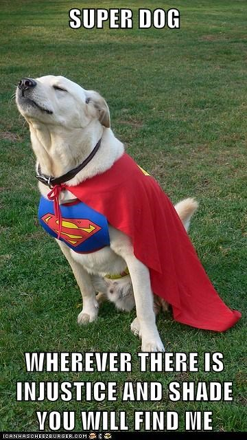 costume funny superman - 7632388096