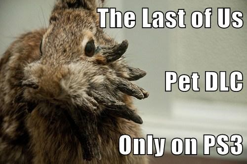 the last of us animals rabbits - 7633349120