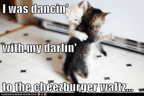 Cheezburger Image 7633354752