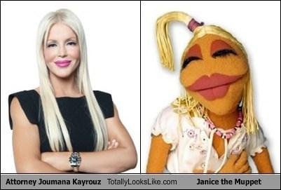janice the muppet,muppets,jouamana kayrouz,totally looks like,funny