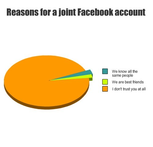pie charts relationships facebook graphs funny - 7634488832