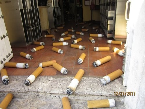 wtf,cigarettes,cigarette butts,funny