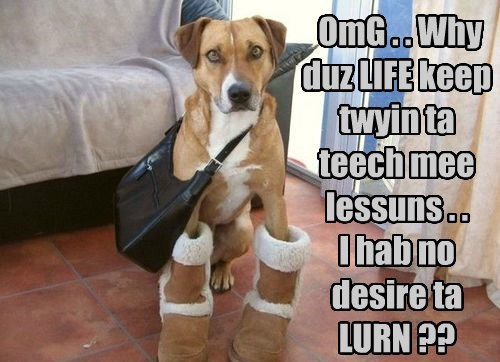 OmG . . Why duz LIFE keep twyin ta teech mee lessuns . . I hab no desire ta LURN ??