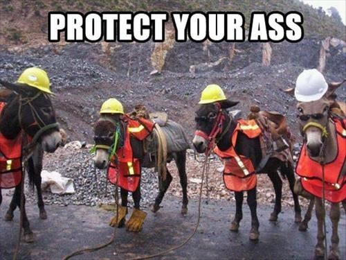 safety first,puns,funny