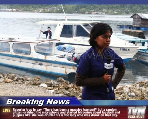 "Breaking News - Reporter trys to say ""There has been a massive tsunami"" but a random citizen grabbed the microphone and started blabering about tacobell and puppies like she was drunk.This is the lady who was drunk on that day."