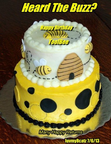 Heard The Buzz? ToolBee Happy Birthday luvmy8catz 7/6/13 Many Happy Returns