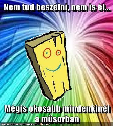 Cheezburger Image 7636375040