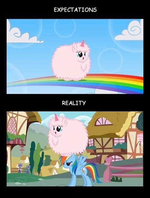 fluffle puff rainbows rainbow dash - 7636983808