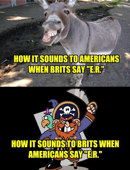accents pirates british people funny donkeys - 7638039040