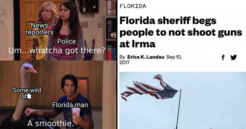wtf united states funny headlines florida memes SMH florida man florida stereotypes the south twitter funny tweets slang is this a pigeon - 7638277
