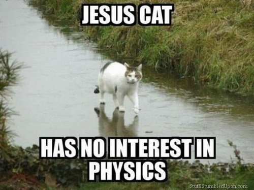 jesus,cat,physics,sink,science,funny