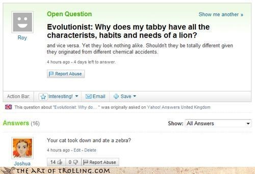evolution trolling yahoo answers Cats funny - 7638556160