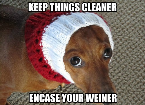 KEEP THINGS CLEANER ENCASE YOUR WEINER