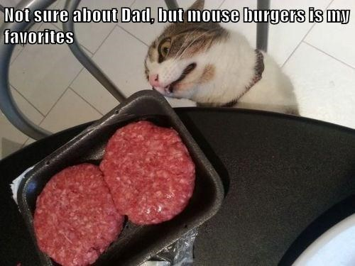 Cheezburger Image 7638951936
