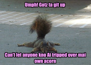 groceries squirrel acorn funny - 7640345344