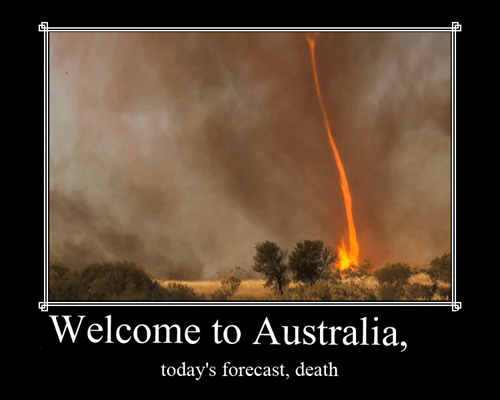scary Death australia funny - 7641847808