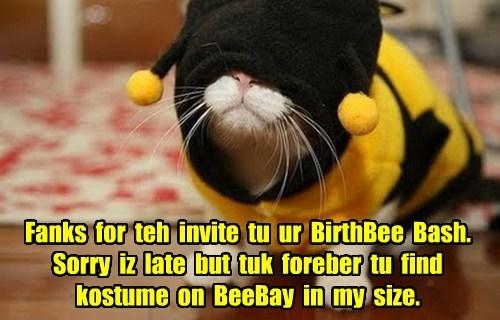 Fanks for teh invite tu ur BirthBee Bash. Sorry iz late but tuk foreber tu find kostume on BeeBay in my size.