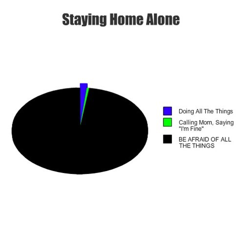 pie charts Home Alone graphs funny