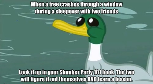 ponified friendly advice duck Memes - 7642647552