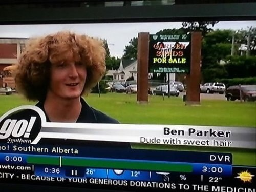 live news,sweet hair,ben parker,news headlines