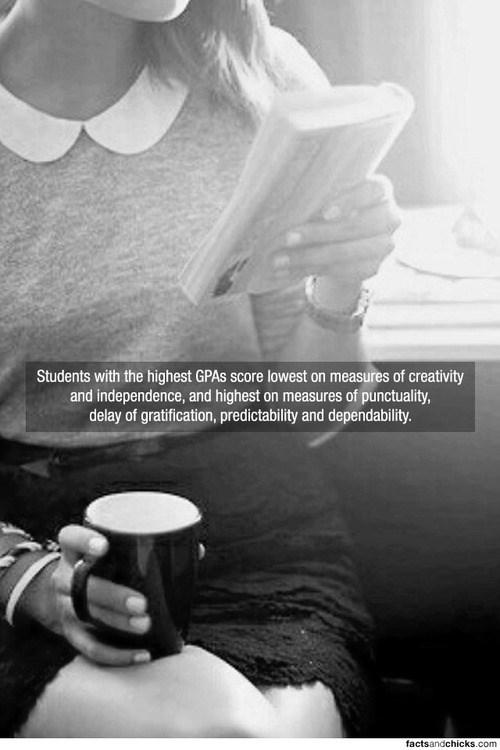 school creative grades dependable funny - 7642987008