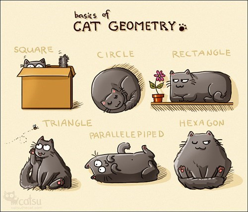geometry,cute,comic