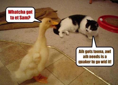 Whatcha got ta et Sam? Aih gots toona, awl aih needs is a quaker tu go wid it!