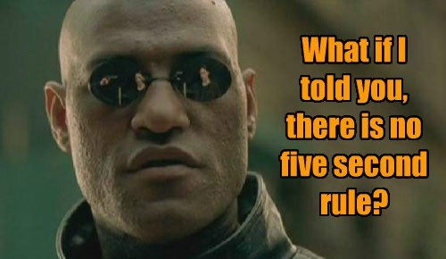 What if I told you, there is no five second rule?