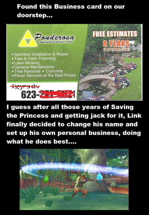 IRL legend of zelda lawn care video games - 7644241664