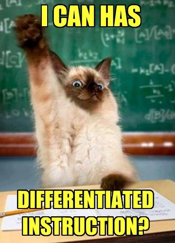 I CAN HAS DIFFERENTIATED INSTRUCTION?