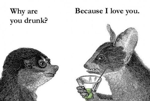 wtf drunk love funny animals - 7645447680