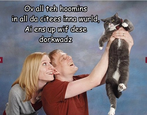 Ov all teh hoomins in all da citees inna wurld, Ai ens up wif dese dorkwadz